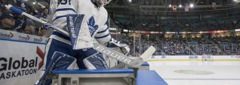Maple Leafs vs. Hurricanes Prediction: NHL Betting Odds